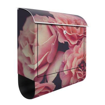 Briefkasten - Rosenträume