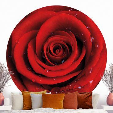 Runde Tapete selbstklebend - Rote Rose mit Wassertropfen