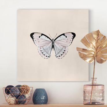 Leinwandbild - Schmetterling auf Beige - Quadrat 1:1
