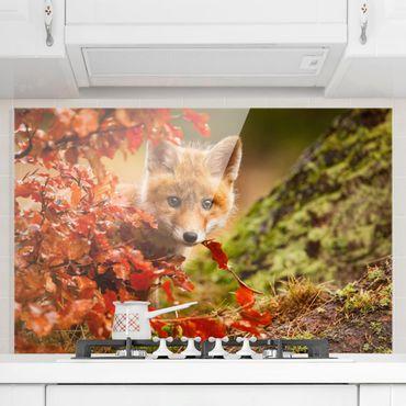 Spritzschutz Glas - Fuchs im Herbst - Quer 3:2