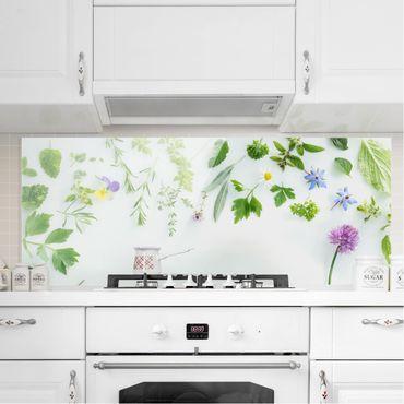 Spritzschutz Glas - Kräuter und Blüten - Panorama Quer