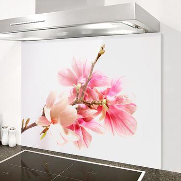 Spritzschutz Glas - Magnolienblüten - Quer 4:3