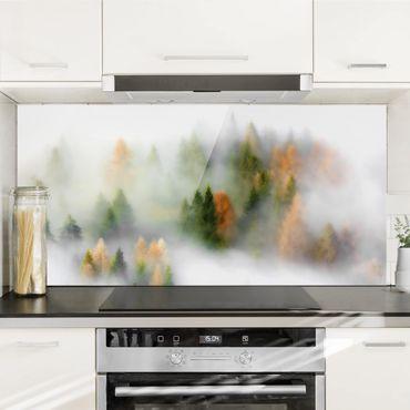 Spritzschutz Glas - Nebelwald im Herbst - Querformat 1:2
