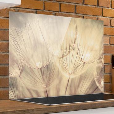 Spritzschutz Glas - Pusteblumen Nahaufnahme in wohnlicher Sepia Tönung - Quadrat 1:1