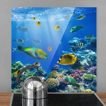 Spritzschutz Glas - Underwater Lights - Quadrat 1:1