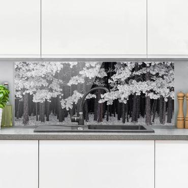 Spritzschutz Glas - Wald mit Raureif in Österreich - Panorama Quer