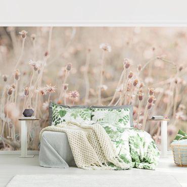 Fototapete - Strahlende Blumenwiese