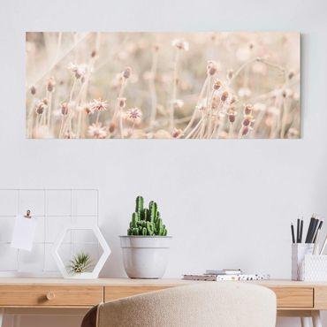Glasbild - Strahlende Blumenwiese - Panorama