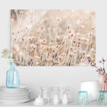 Glasbild - Strahlende Blumenwiese - Querformat