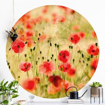Runde Tapete selbstklebend - Summer Poppies