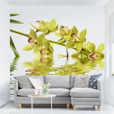 Fototapete Elegant Orchid Waters