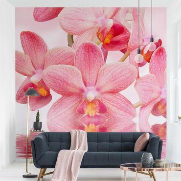 Fototapete Rosa Orchideen auf Wasser
