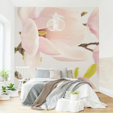 Fototapete Royal Magnolia