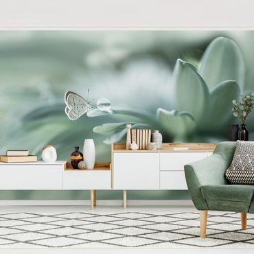 Fototapete - Schmetterling und Tautropfen in Pastellgrün