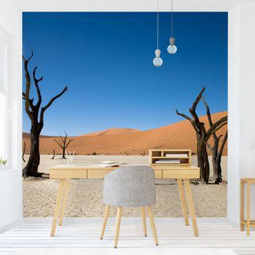 Fototapete Sossusvlei Namibia