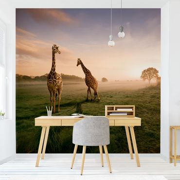 Fototapete Surreal Giraffes