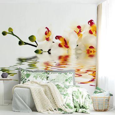 Fototapete Vivid Orchid Waters