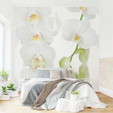 Fototapete Wellness Orchidee - Weiße Orchidee