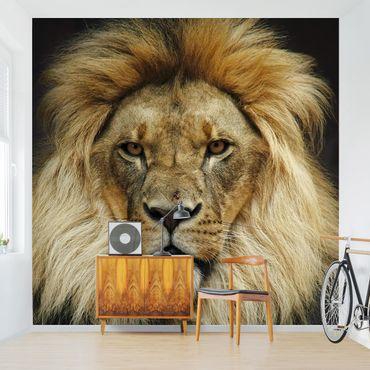 Fototapete Wisdom of Lion