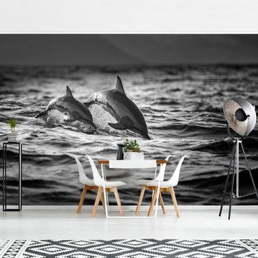 Fototapete - Zwei springende Delfine