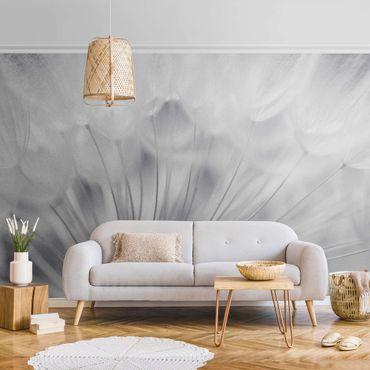 Metallic Tapete  - Traumhafte Pusteblume Schwarz-Weiß