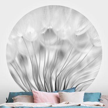 Runde Tapete selbstklebend - Traumhafte Pusteblume Schwarz-Weiß