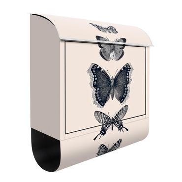 Briefkasten - Tusche Schmetterlinge auf Beige