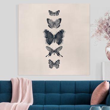 Leinwandbild - Tusche Schmetterlinge auf Beige - Quadrat 1:1
