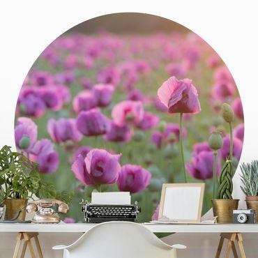 Runde Tapete selbstklebend - Violette Schlafmohn Blumenwiese im Frühling