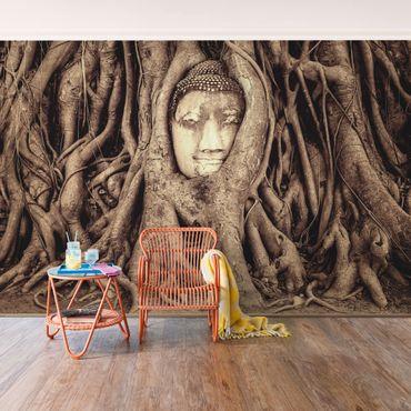 Fototapete Buddha in Ayutthaya von Baumwurzeln gesäumt in Braun