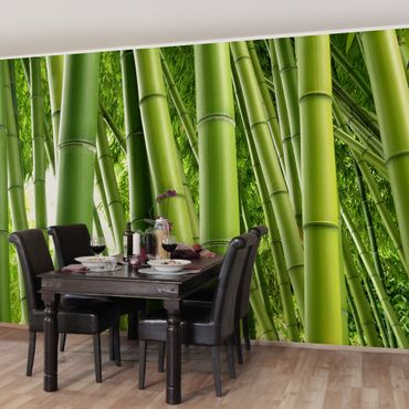Fototapete Bamboo Trees
