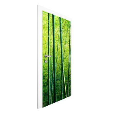 Türtapete - Bambuswald