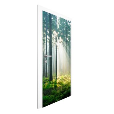 Türtapete - Enlightened Forest