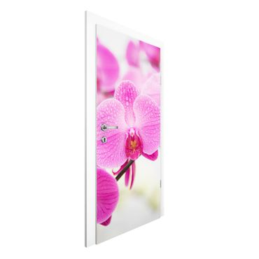 Türtapete - Nahaufnahme Orchidee