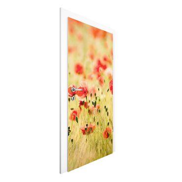 Türtapete - Summer Poppies