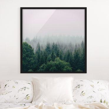 Bild mit Rahmen - Wald im Nebel Dämmerung - Quadrat