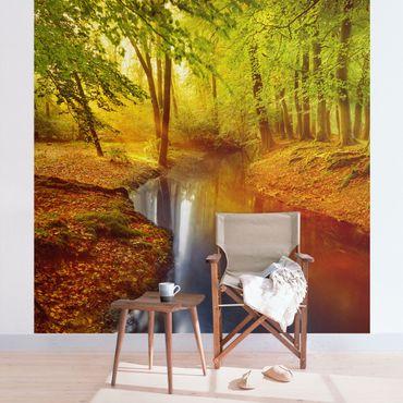 Fototapete Herbstwald