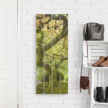 Wandgarderobe Holz - Grüner Japanischer Garten