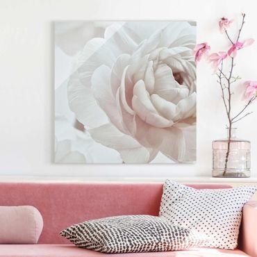 Glasbild - Weiße Blüte im Blütenmeer - Quadrat