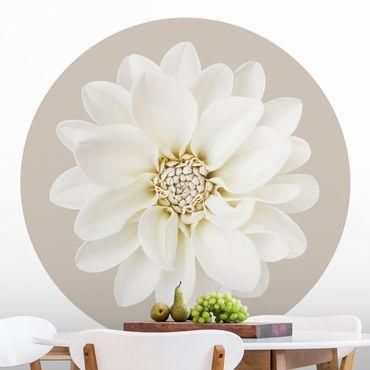 Runde Tapete selbstklebend - Weiße Dahlie auf Creme