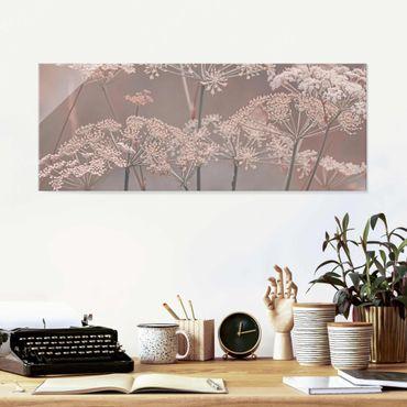 Glasbild - Wilde Doldenblüten - Panorama