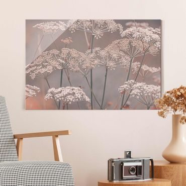 Glasbild - Wilde Doldenblüten - Querformat