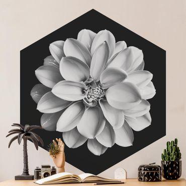 Hexagon Mustertapete selbstklebend - Zarte Dahlie in Schwarz-Weiß