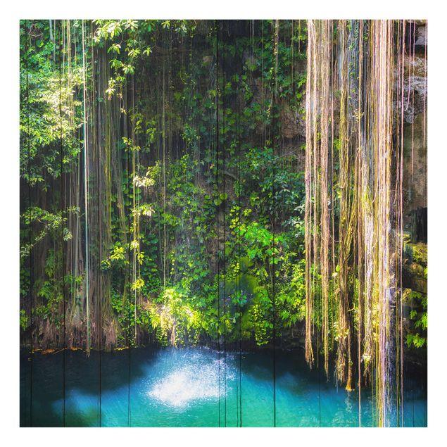 Glasbild - Hängende Wurzeln von Ik-Kil Cenote - Quadrat 1:1
