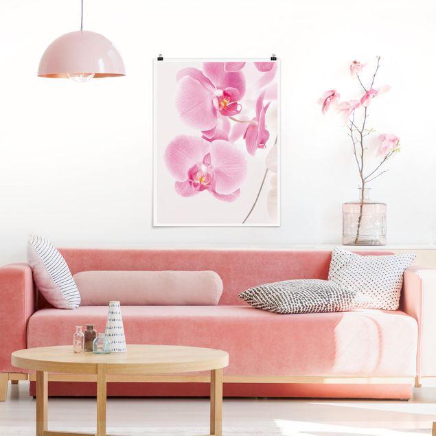 Poster - Delicate Orchids - Hochformat 3:4