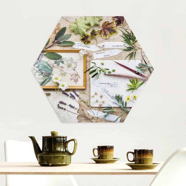 Hexagon Bild Alu-Dibond - Blumen und Gartenkräuter Vintage