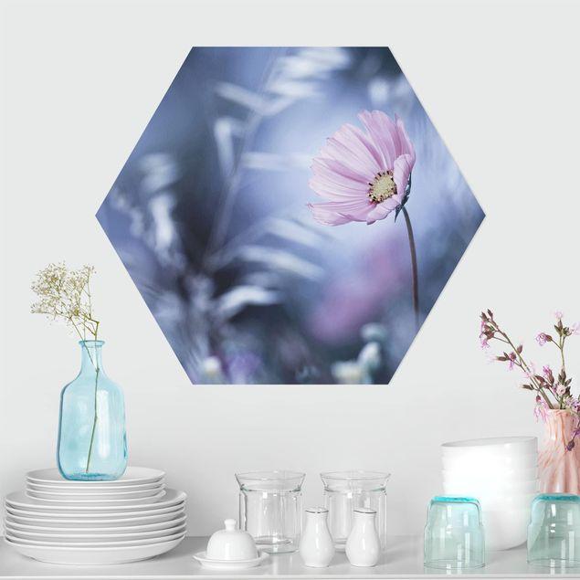 Hexagon Bild Alu-Dibond - Blüte in Pastell