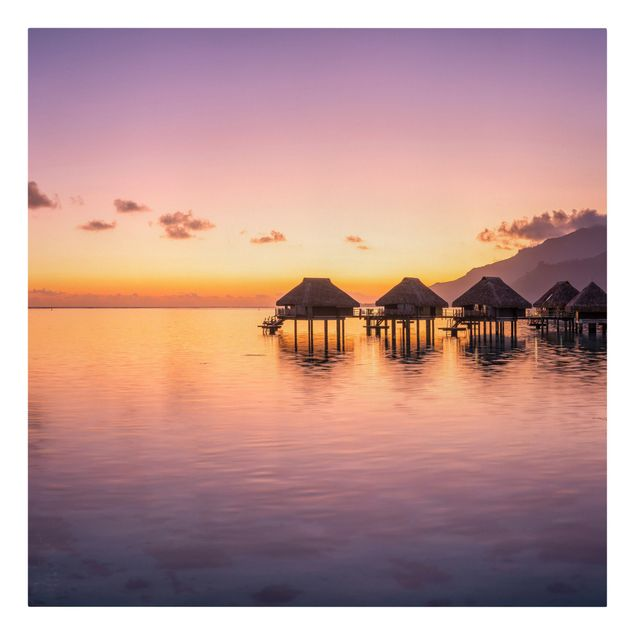 Leinwandbild - Sunset Dream - Quadrat 1:1
