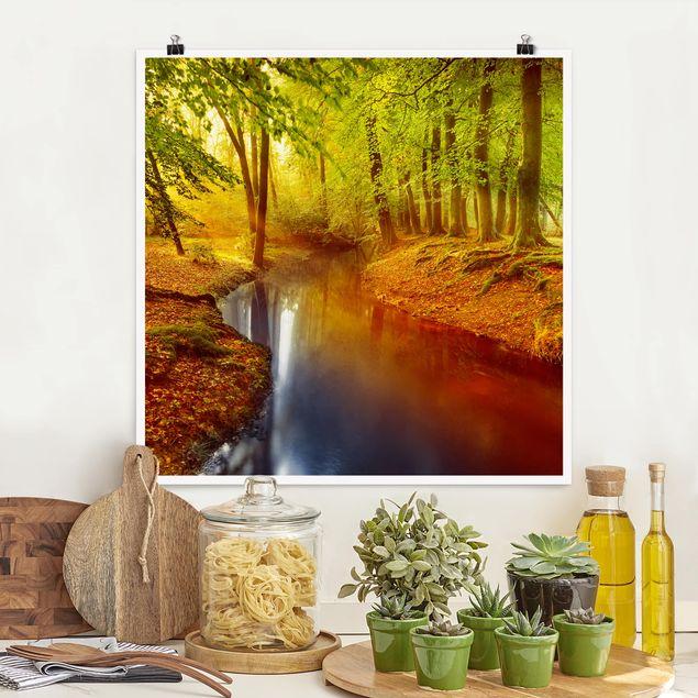 Poster - Herbstwald - Quadrat 1:1