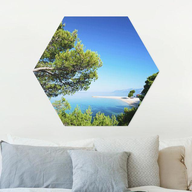 Hexagon Bild Alu-Dibond - Hidden Paradise